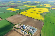 Biogas : renewable energy for future